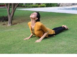 Image result for bhujangasana dhyan foundation