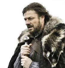 Brace Yourself Winter is Coming. | Meme Generator via Relatably.com