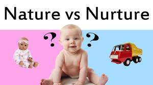 nature and nurture debate related keywords suggestions nature nature vs nurture thoughts on child development