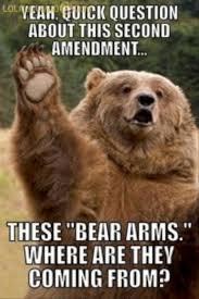 funny koala bear meme via Relatably.com