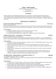 sean mcconnell resume professional sperson