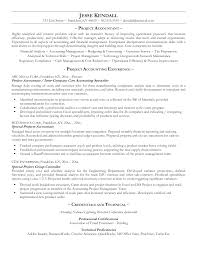 resume sample project management samples doc examples some resume sample project management samples doc examples some elements the professional bookkeeper resume sample actuary entry level professional