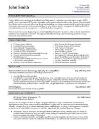 Examples For Resume  resume examples it professional sample resume     happytom co Download Resume Template Cv Template Download Cv Sample Download       resume examples it