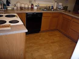 Kitchen Bathroom Flooring Cork Flooring In Bathrooms All About Flooring Designs