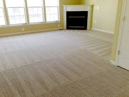 carpet care seo