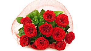 Image result for rose image wallpaper