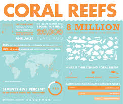 short notes on the importance of coral reefs in the marine ecosystem importance of coral reefs