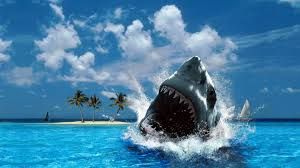 shark week games online ajilbab com portal shark week games online ajilbab com portal