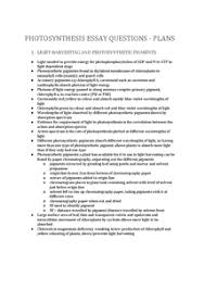 photosynthesis essay plans   document in a level and ib biologypreview of photosynthesis essay plans