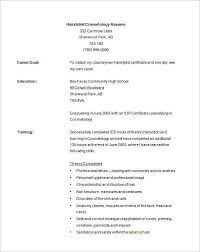 hair stylist resume template   free pdf  word  psdcosmetology resume template free