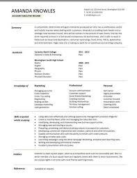 Sales Executive CV template example, marketing executive, revenue ... Entry level account executive resume