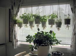 Kitchen Windowsill Herb Garden Kitchen Garden Window Decorating Ideas Unusual Design Ideas
