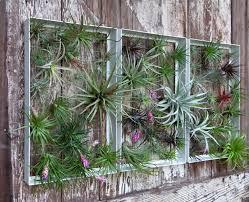 designs outdoor wall art: living vertical garden frames by airplantman design milk