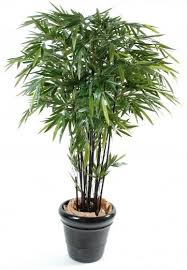 planters ready potted trees plants special offers artificial black stem bamboo 600x600 artificial topiary tree ball plants pot garden