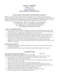 sample b2b s resume resume format for freshers sample b2b s resume sample s representative resume laura smith proulx b2b s resume s s