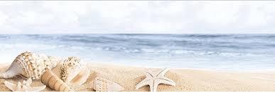 <b>Керамический декор Ibero</b> Poeme Perla Decor Sea 1 25х75см ...
