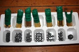 Image result for hunting shotguns pellets