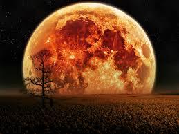 Resultado de imagen de paisajes con luna