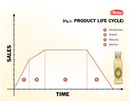 product life cycle   re launching a product   heinz   heinz case        product life cycle  heinz  diagram