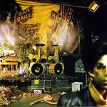 Hot Thing by Prince
