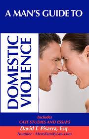 men s family law family law issues from the man s perspective a man s guide to domestic violence
