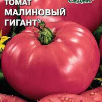 <b>Томат Малиновый гигант</b>» — Результаты поиска — Яндекс.Маркет
