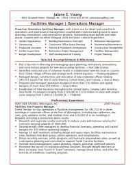 professional resume format for experienced cipanewsletter sample resume for experienced it professionals pic sample resume