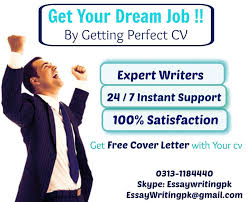 Professional Resume   CV Writing and Editing Services     Essay Writing PK