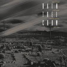<b>Rain Tree Crow</b> (2019 Vinyl) - David Sylvian : Expect Everything ...
