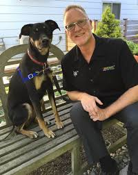 dog behavior therapist david wiley s cool job the seattle times