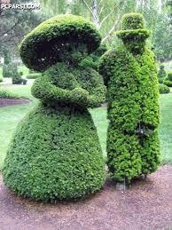 Image result for تصویر زیبای دو عروسک در چمن