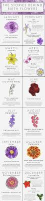 what your birth flower says about your personality births discover the meaning of your floral zodiac or the bloom associated the