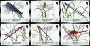 Image result for dragonfly stamp