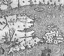 marc lescarbot histoire de la nouvelle france contenant les navigations decouverts et habitations faites par francois es indes occidentales nouvelle france muses nouvelle french edition
