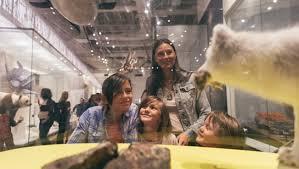 3rd Tuesday Nights <b>Free</b> | Royal Ontario Museum