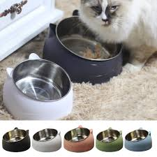top 10 largest ceramic <b>cat</b> food <b>bowl</b> ideas and get free shipping - a4