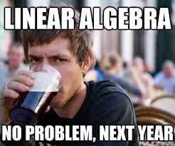 Linear Algebra No problem, next year - Lazy College Senior - quickmeme via Relatably.com