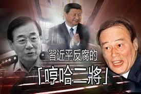 「劉源辞任」の画像検索結果