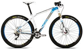 Image result for Orbea Alma 29