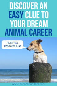 best images about wildlife careers biologist a unique clue to your dream animal career