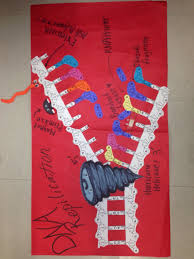 dna replication poster my biology class dna and poster dna replication poster