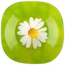 Суповая тарелка 22см <b>Luminarc Carine</b> Paquerette H6590 - купить ...