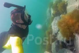 Полнолицевая <b>маска FREE Breath</b> для плавания (снорклинга ...