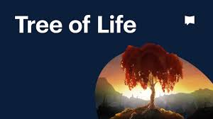 <b>Tree of Life</b> - YouTube