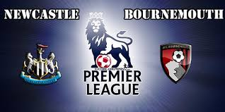 Image result for newcastle united v Bournemouth logo
