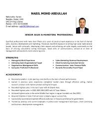 Example sales resume for sales executive page