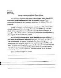 check your essay online    check your essay online