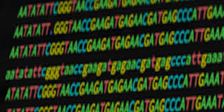 Data Analysis for <b>Life</b> Sciences | Harvard University