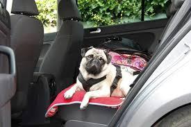 The 25 Best <b>Dog Car</b> Seats & Booster Seats of 2019 - <b>Pet</b> Life Today