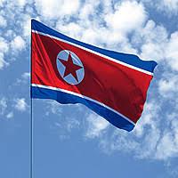 Картинки по запросу кндр флаг